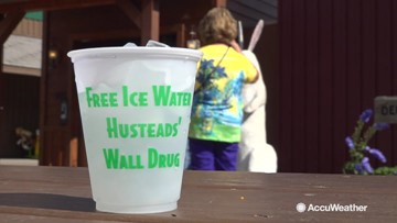 How Wall Drug Store turned free ice water into millions of customers