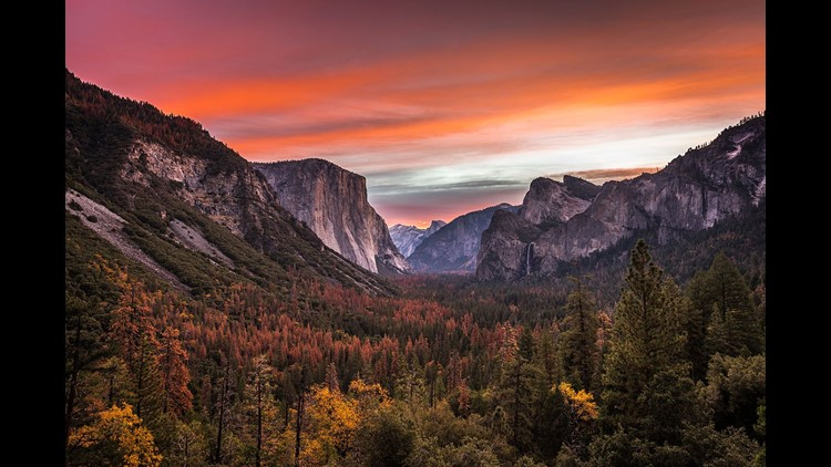 Earth Day celebrations include free national park entry and Yosemite bus ride