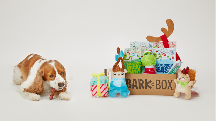 Barkboxholiday