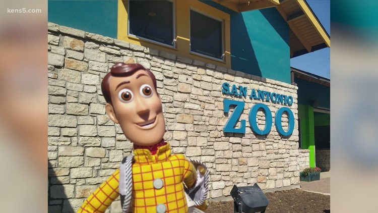 Woody doll reunited with his owner after being lost at the zoo
