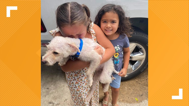 Deputies reunite dog missing for almost two months with its humans