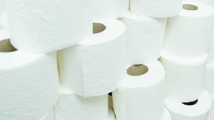 Why we should not fear another toilet paper shortage