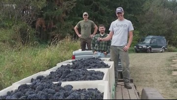 'We have a personal relationship with each barrel': Veterans start their own winery