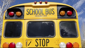 Driver who ran school bus stop sign and hit boy, 8, says she had to go to the bathroom: Sheriff