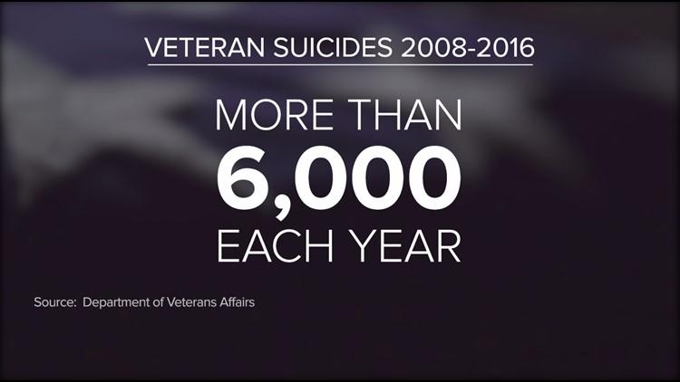 Veteran Suicides_1542774786939.PNG.jpg