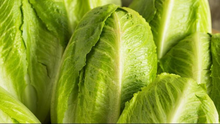 Multistate E. coli outbreak traced to lettuce from Arizona