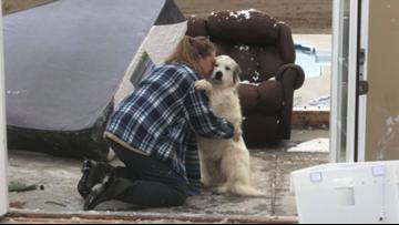 Dog reunites with owner after tornado destroys house in Arkansas