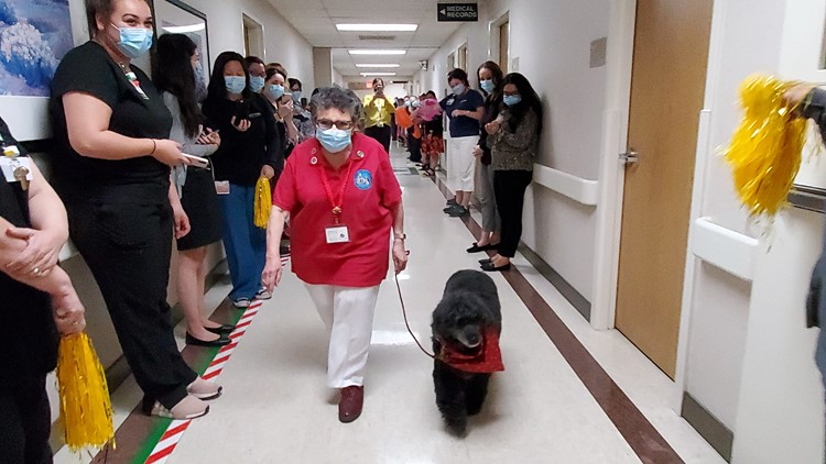 Therapy dog receives celebratory walk-off after serving over 8 years at Modesto hospital