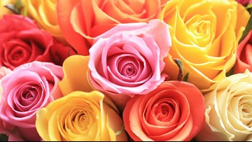 BBB offers tips to avoid Valentine's Day flower scams