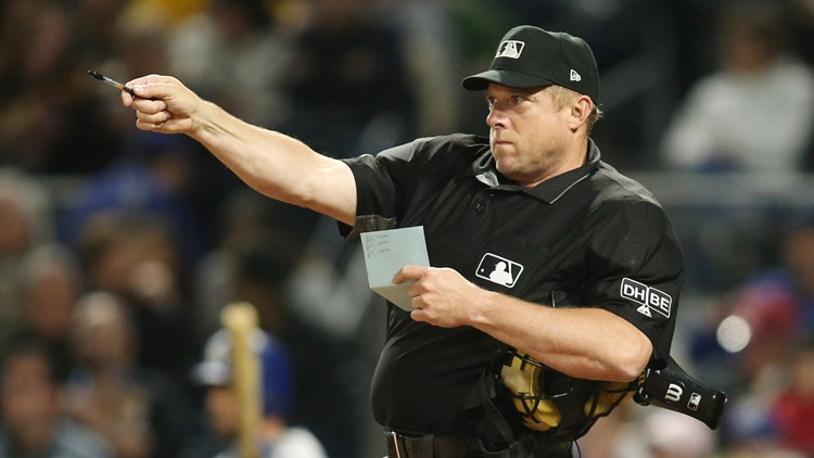An umpire in Wednesday's Yankees-White Sox game had to take a timeout because a giant bug flew into his ear and had to be pulled out.