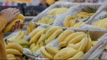 Cocaine Stash Worth $1 Million Found in Banana Boxes at Washington Safeway Stores