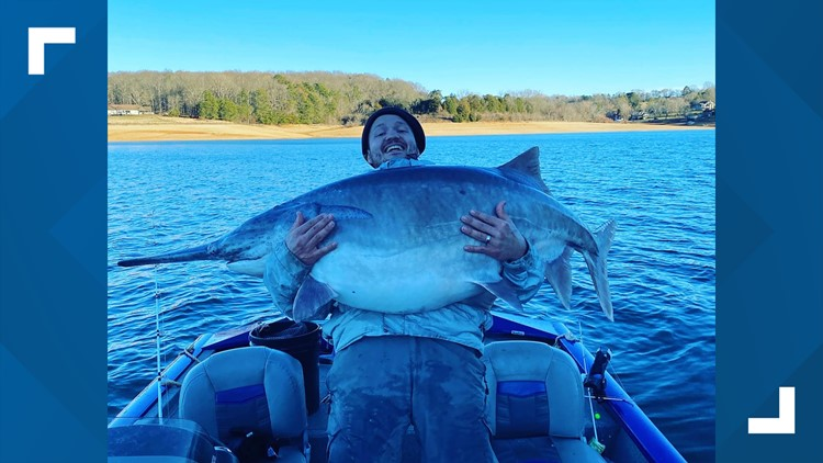 East TN man reels in potentially record-breaking fish on Cherokee Lake
