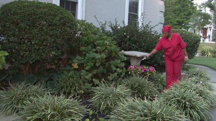 SC woman finds her peace amid 300 plants. Neurology suggests she's onto something