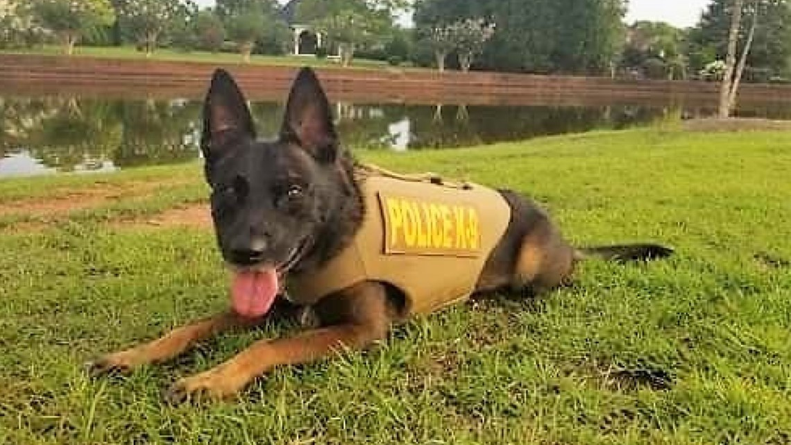 Centerville police dogs receive bullet and stab protective