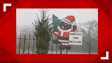Recycle your live Christmas trees in Macon this weekend