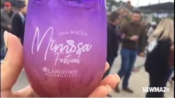 Society Garden hosts Mimosa Festival in Ingleside Village