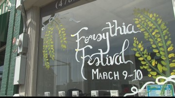 32nd annual Forsythia Festival takes over downtown Forsyth