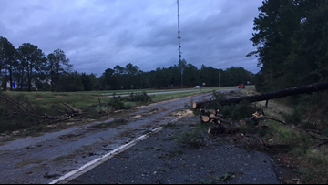 Fallen trees causing traffic jams along I-16
