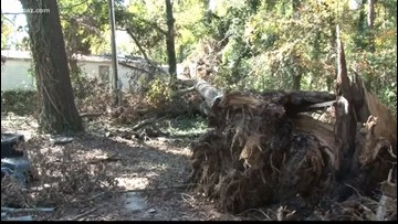 'It's like you're losing a best friend or something:' Veteran's home damaged after Michael