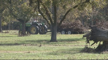 Gov. Nathan Deal's new bill to give $270M to Ga. farmers in need of hurricane relief