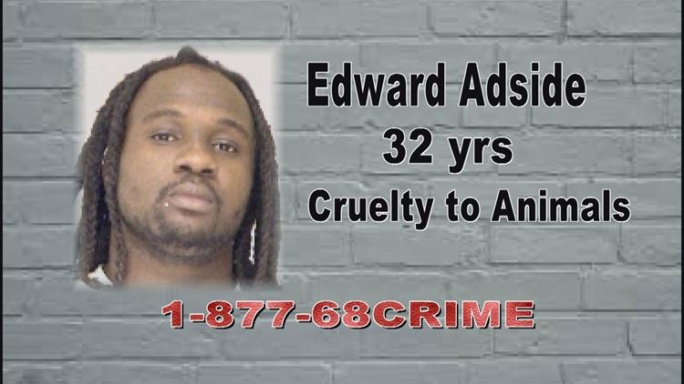 Edward Adside_1544112061099.jpg.jpg