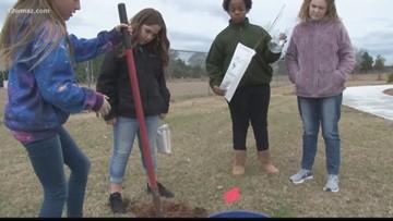 Jones Co. Girl Scouts plant trees in park