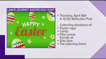 Lani's Journey to host easter egg hunt for kids with special needs