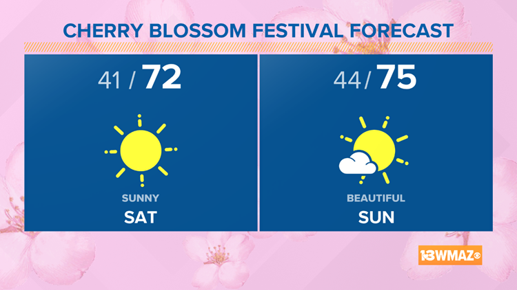 Sunny and 70's for Cherry Blossom Weekend!