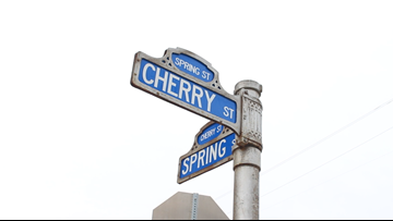 Just Curious: Why are the streets in downtown Macon named after trees?