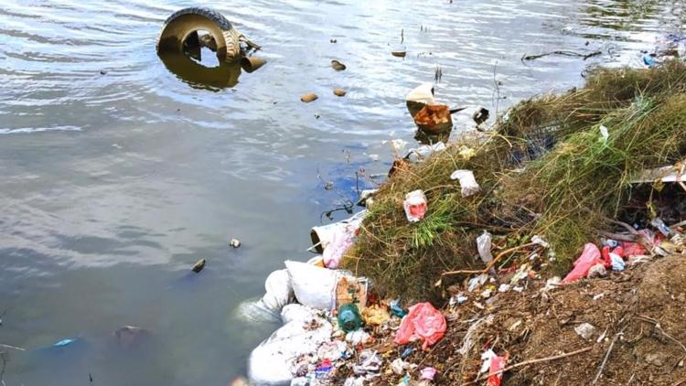 'Provide a place where people can put their trash:' Baldwin County aims to curb litter at Lake Sinclair, roadsides