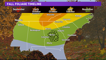 How the weather now will impact leaves changing color