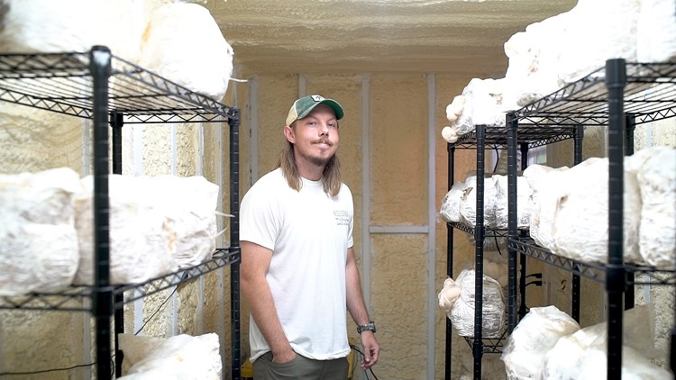 From military to mushroom farmer: How a Macon native found his passion with Middle Georgia Mushroom