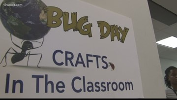 Museum of Arts and Sciences holds annual Bug Day