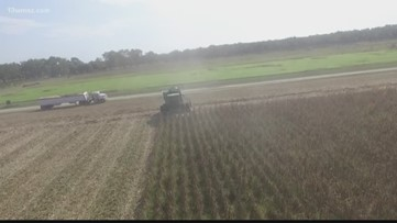 Fort Valley State using drones to assess farmland