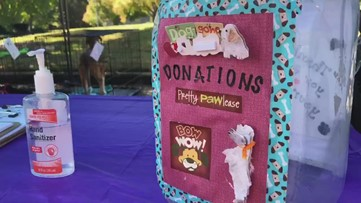 Macon Coldwell Banker participates in 'Homes for Dogs' event