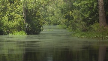 Georgia officials vote to favor mining near Okefenokee refuge