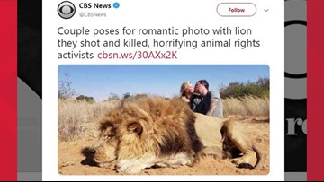 Couple kills lion, then poses for kissing photo with corpse