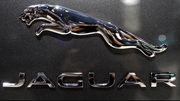 Florida man's Jaguar slices off his thumb
