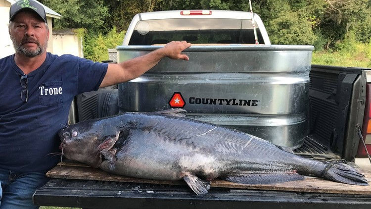 Fisherman reels in 110-pound monster of a fish in Georgia