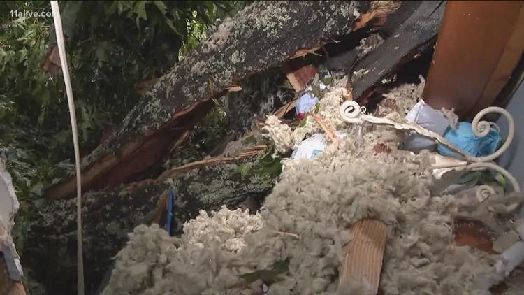Fallen tree lands in family's bedroom in Banks County