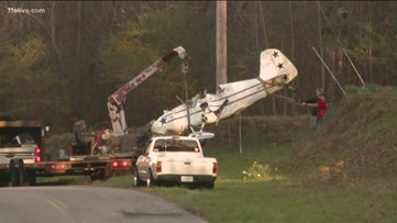 Witness describes seeing plane crash near Senoia, running to help pilot