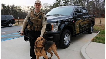 Sheriff: Hall County K-9 officer may have died from toxic algae